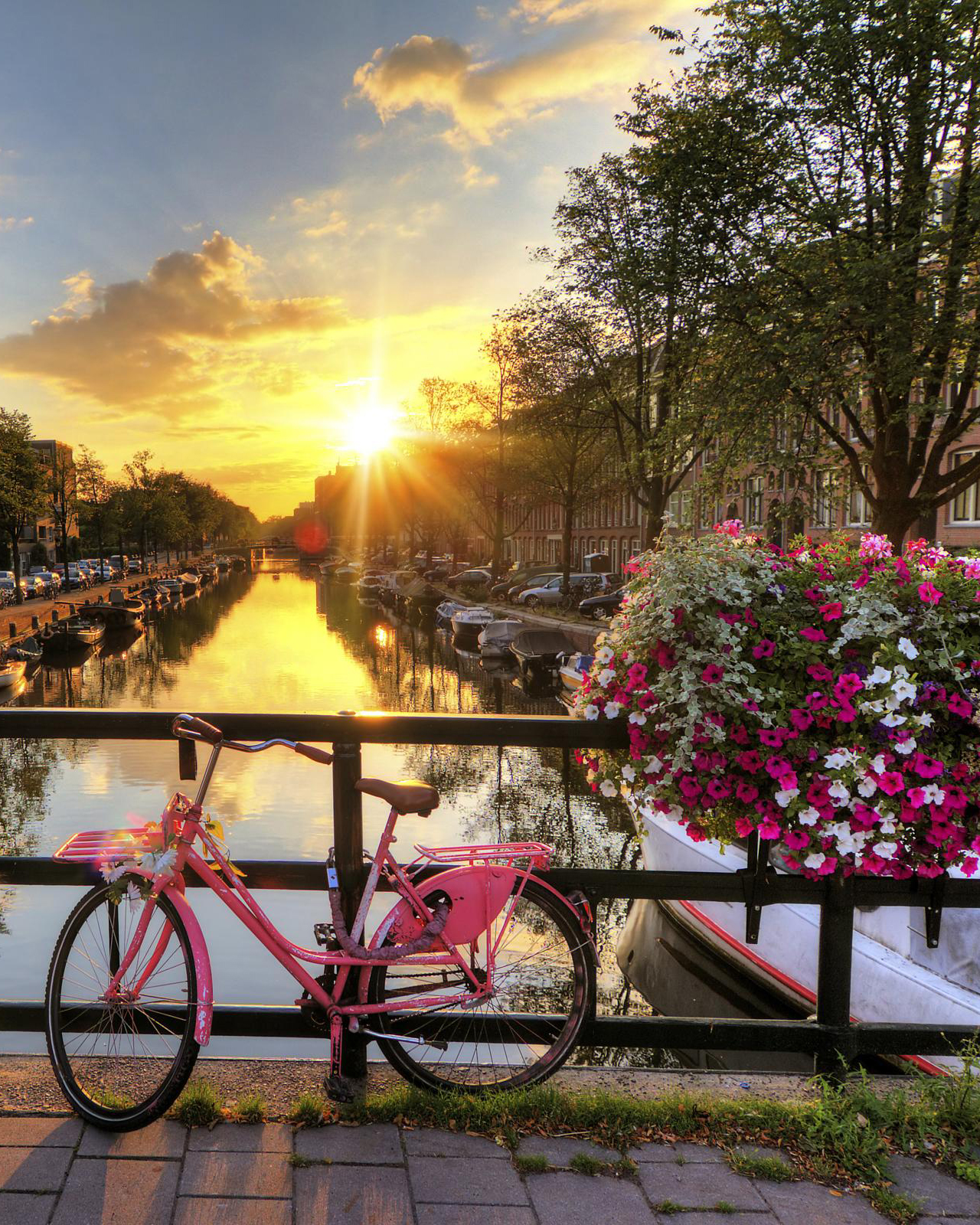 В страната на вятърните мелници – Холандия