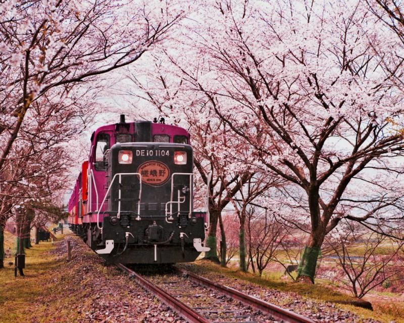 romantic train - kameoka - ready