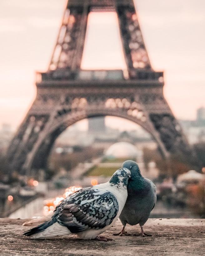 Екскурзия до есенен Париж