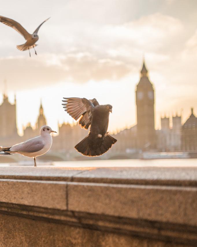 Есенна разходка до Лондон